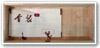 柏木(帯たとう紙)